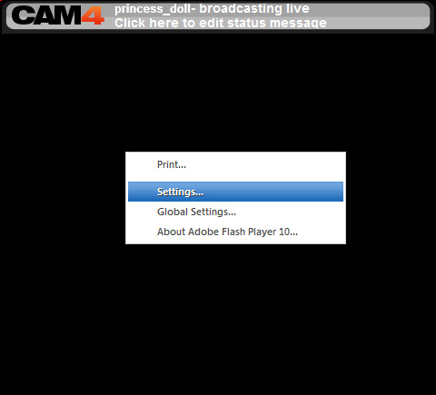 CAM4 Webcam: 4 - Click right button on video window and select 'Settings...'.